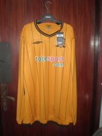 Totesport Sponsor Hull City