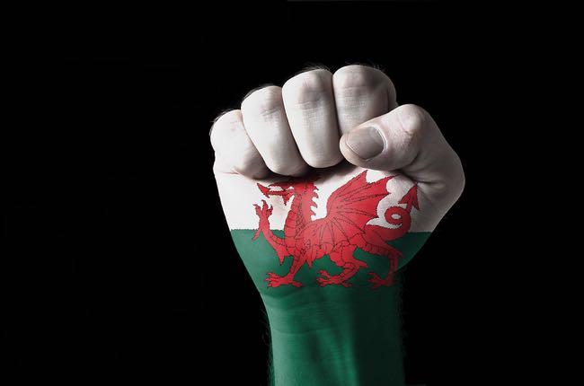 Wales flag fist