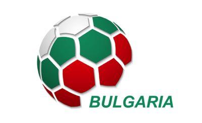 Bulgarian football flag